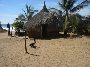 A Lo Cósmico hut with the beach and the sea in the background.